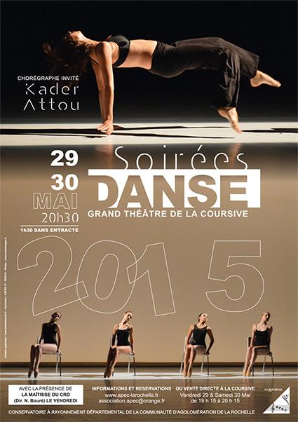 APEC 2015 DANSE